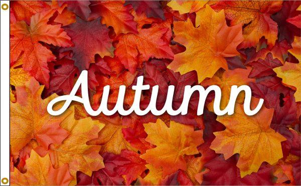 Autumn Leaves - 3x5'
