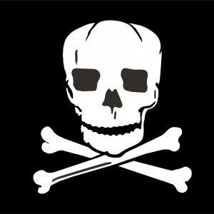 Jolly Roger - 3x5'