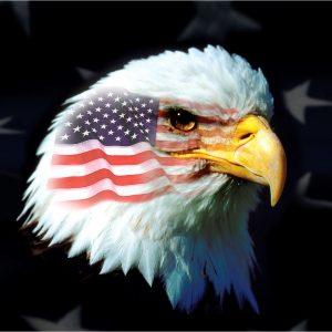 Patriotic Eagle - 3x5'