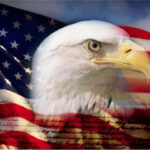 Proud Eagle - 3x5'