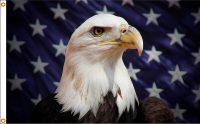 Starfield Eagle - 3x5'