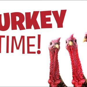 Turkey Time - 3x5'