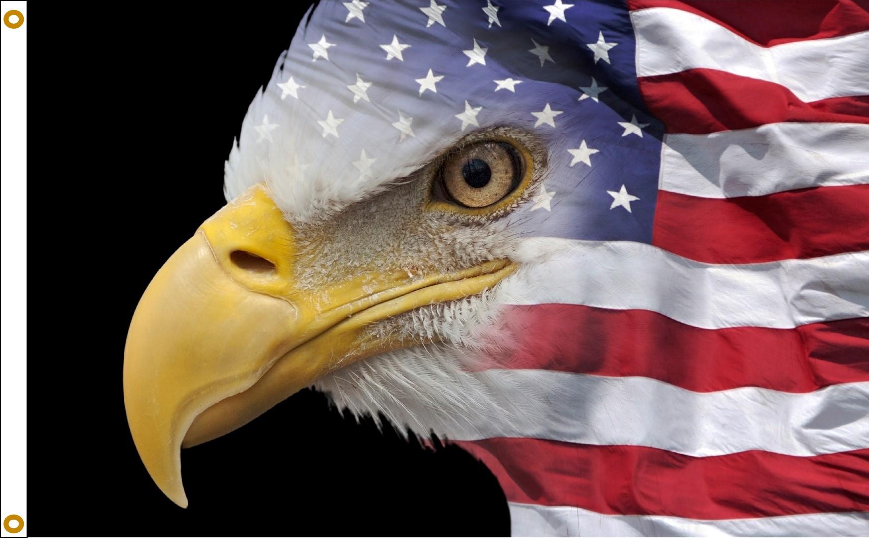 U.S. Flag Eagle - 3x5'