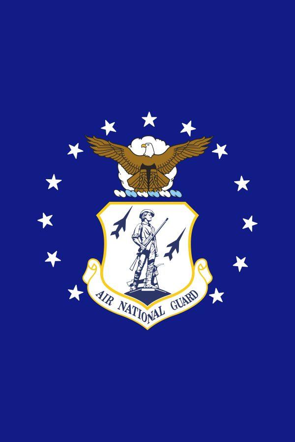 """Air National Guard - 18x12"""""""