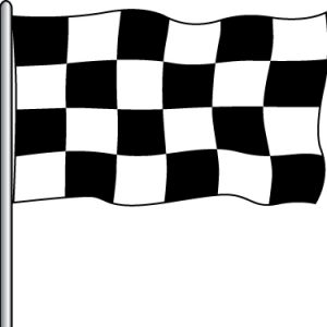 Attraction Flag - B&W Checker 3x5'