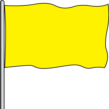 Solid Attraction Flag - F.M. Yellow 3x5'