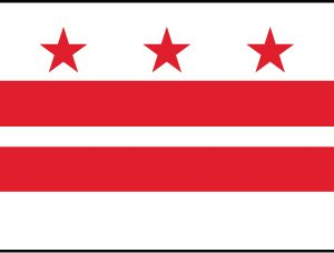 District of Columbia - 3x5'