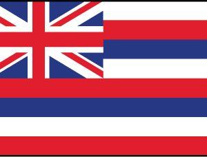 Hawaii - 3x5'