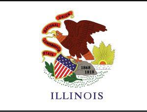 Illinois - 4x6'
