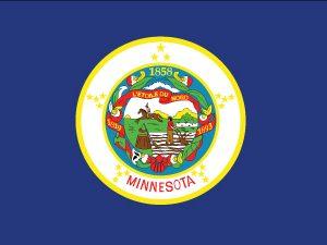 Minnesota - 5x8'