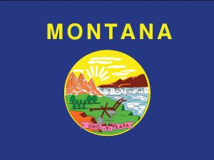 Montana - 3x5'