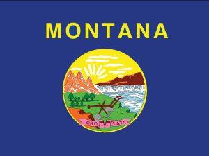 Montana - 4x6'