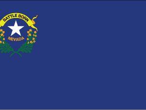 Nevada - 3x5'