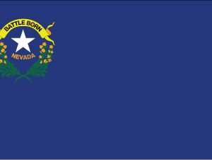 Nevada - 5x8'